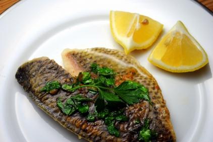 fish-soles