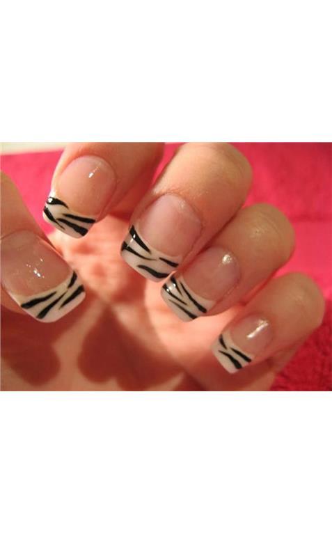 22127375_31_Zebra_French_zebra.limghandler