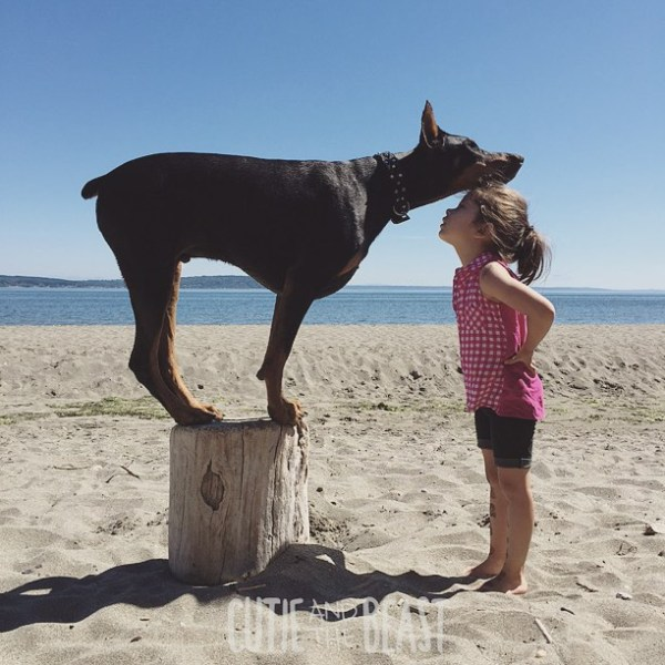 cutie-and-the-beast-dog-girl-seana-doberman-43