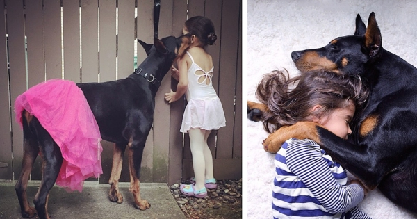 cutie-and-the-beast-dog-girl-seana-doberman-fb